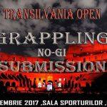 Transilvania Open – Submission