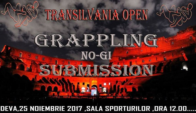 Transilvania Open - Submission