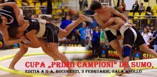 Cupa Primii Campioni de SUMO, editia a II-a