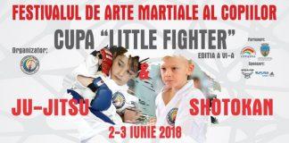 Festivalul de Arte Martiale – Cupa Little Fighter 2018