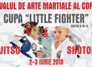 Festivalul de Arte Martiale – Cupa Little Fighter 2018